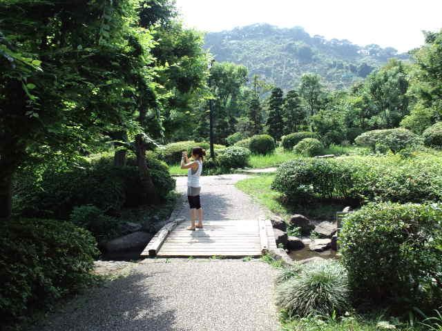 静岡の思い出の地巡り♪ 城北公園 Ⅱ_c0151965_18293541.jpg