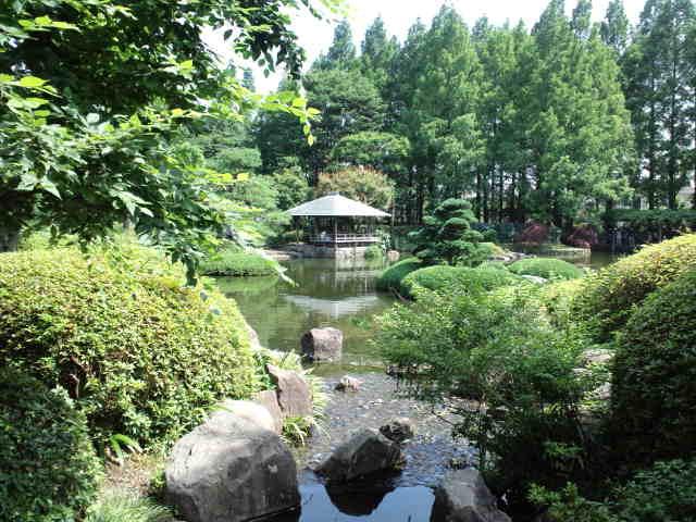 静岡の思い出の地巡り♪ 城北公園 Ⅱ_c0151965_18294798.jpg