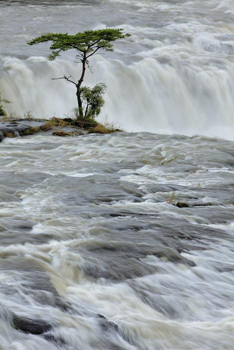曽木の滝_e0135098_124429.jpg