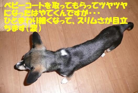 f0121712_012134.jpg