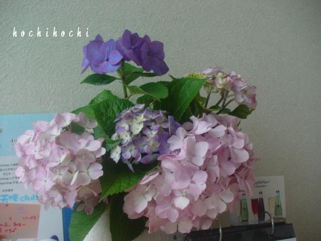 f0151213_1517968.jpg