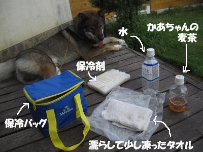 f0143123_20104563.jpg