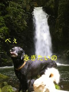 f0148927_18354372.jpg