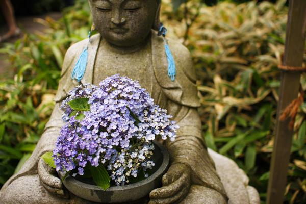 おばはんは鎌倉好き_f0149855_1016185.jpg