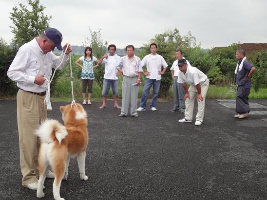 秋田犬の展覧会_b0124462_82710100.jpg