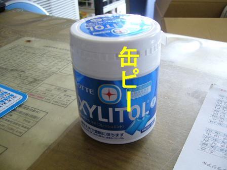 ヤニ_c0080863_12451684.jpg