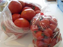 トマトが赤くなると医者は青くなる!_f0172281_1144053.jpg
