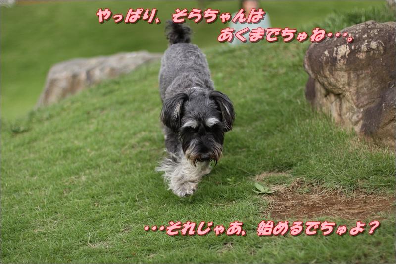 f0223295_222063.jpg