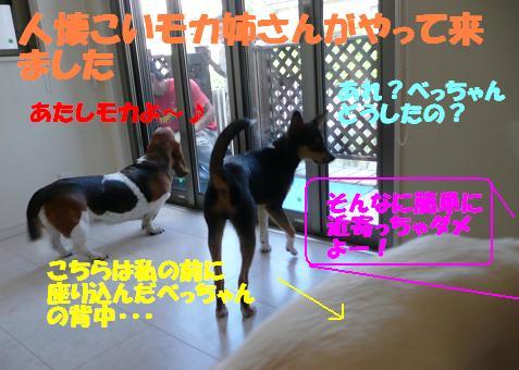 f0121712_15305312.jpg