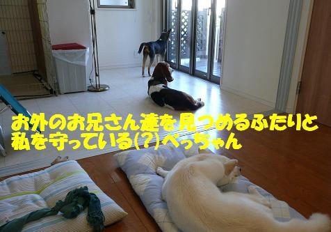 f0121712_1531297.jpg