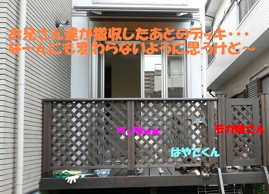 f0121712_15314446.jpg