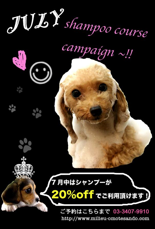 7月のキャンペーン!_d0060413_2063913.jpg