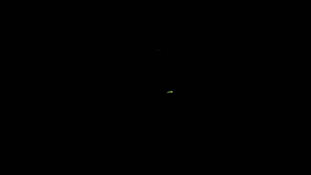 f0233414_8465235.jpg