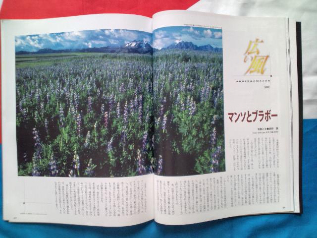 ◎今月も世界は日本は熱い!! どんな世間/社会視野とリアリティーを持って生きる?_b0032617_1158222.jpg