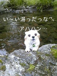 f0148927_16355793.jpg