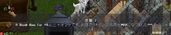d0173843_20455280.jpg