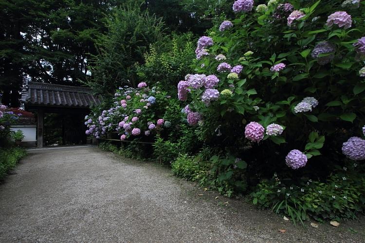岩船寺_e0051888_2203951.jpg
