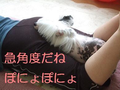 f0179203_1723547.jpg