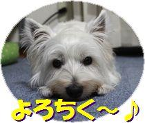 f0084422_16374893.jpg