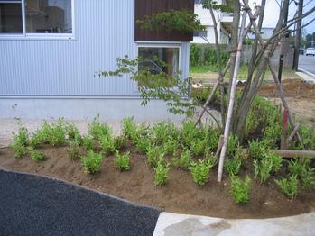 植栽工事_a0157159_22435872.jpg
