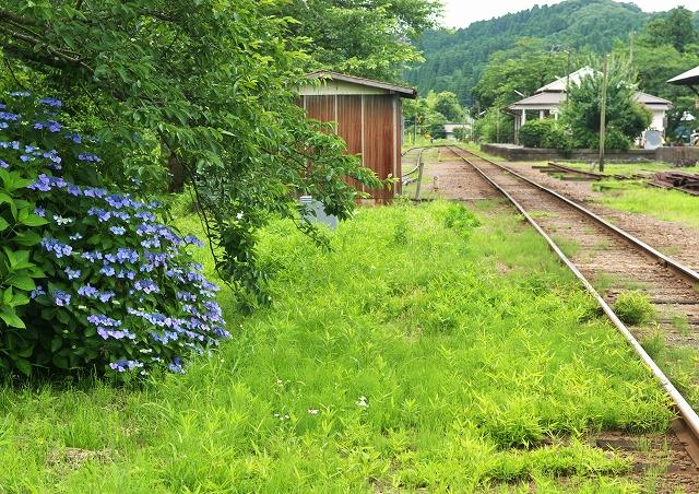 小湊鐵道・紫陽花情報_f0018464_2165168.jpg