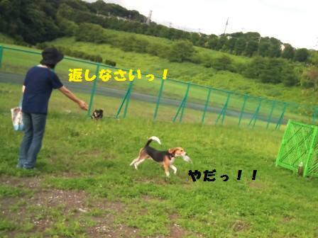 f0230380_21475049.jpg