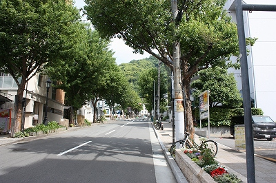 ■神戸~其の弐~■_e0188083_15295198.jpg