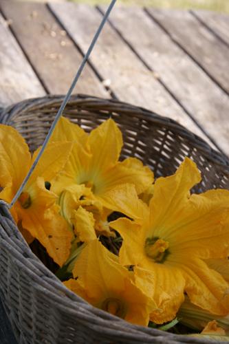 ズッキーニの花のフライ_f0106597_2232822.jpg