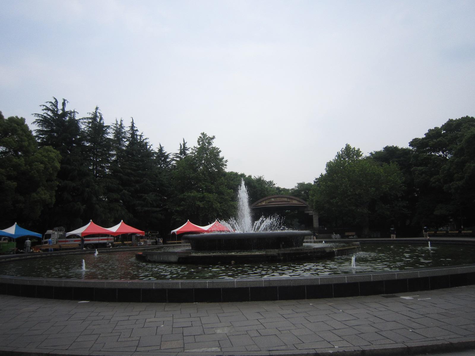 ♪想い出の日比谷公園★薔薇が咲いた!_d0162225_17524162.jpg