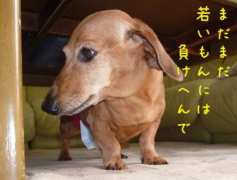 b0138430_19495060.jpg