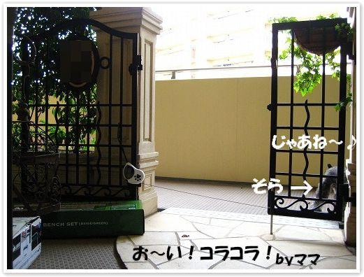 c0180949_16515311.jpg