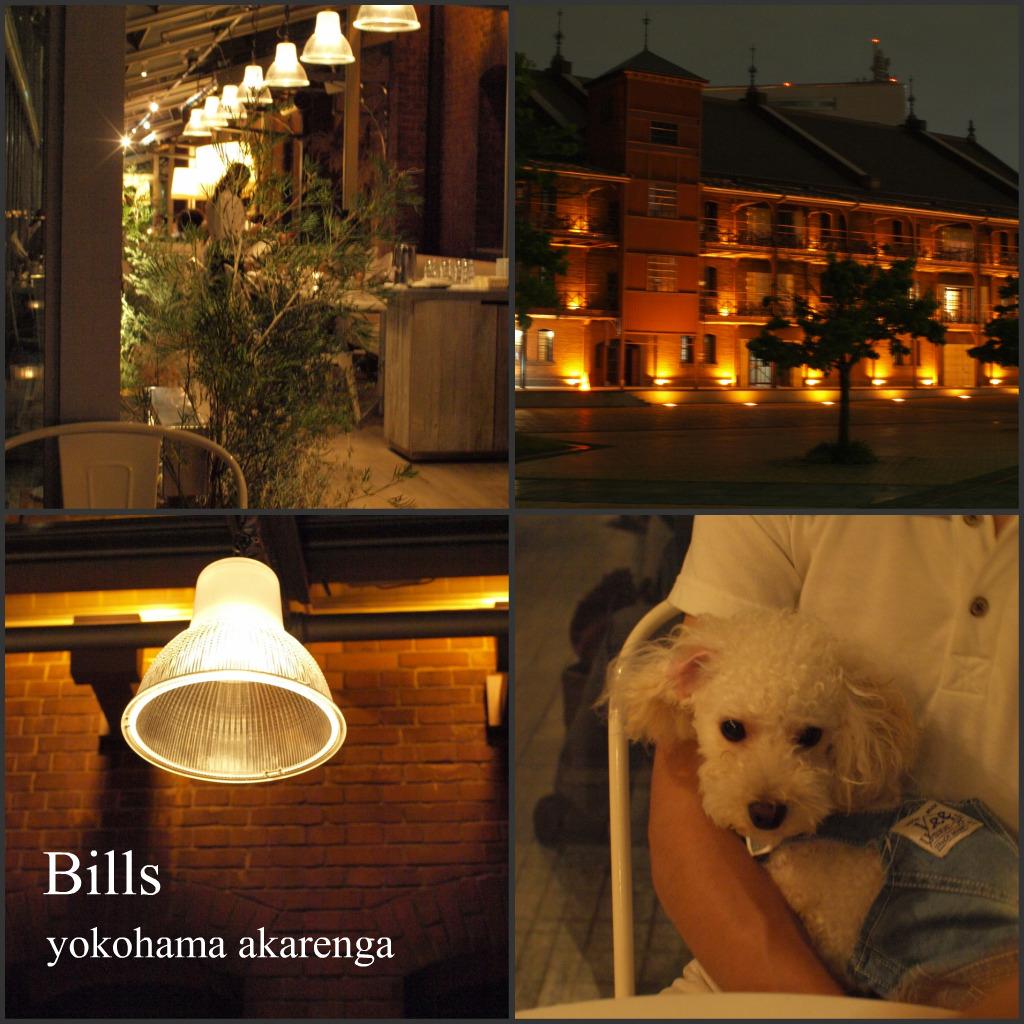 修廣樹とBills_e0158653_21481448.jpg