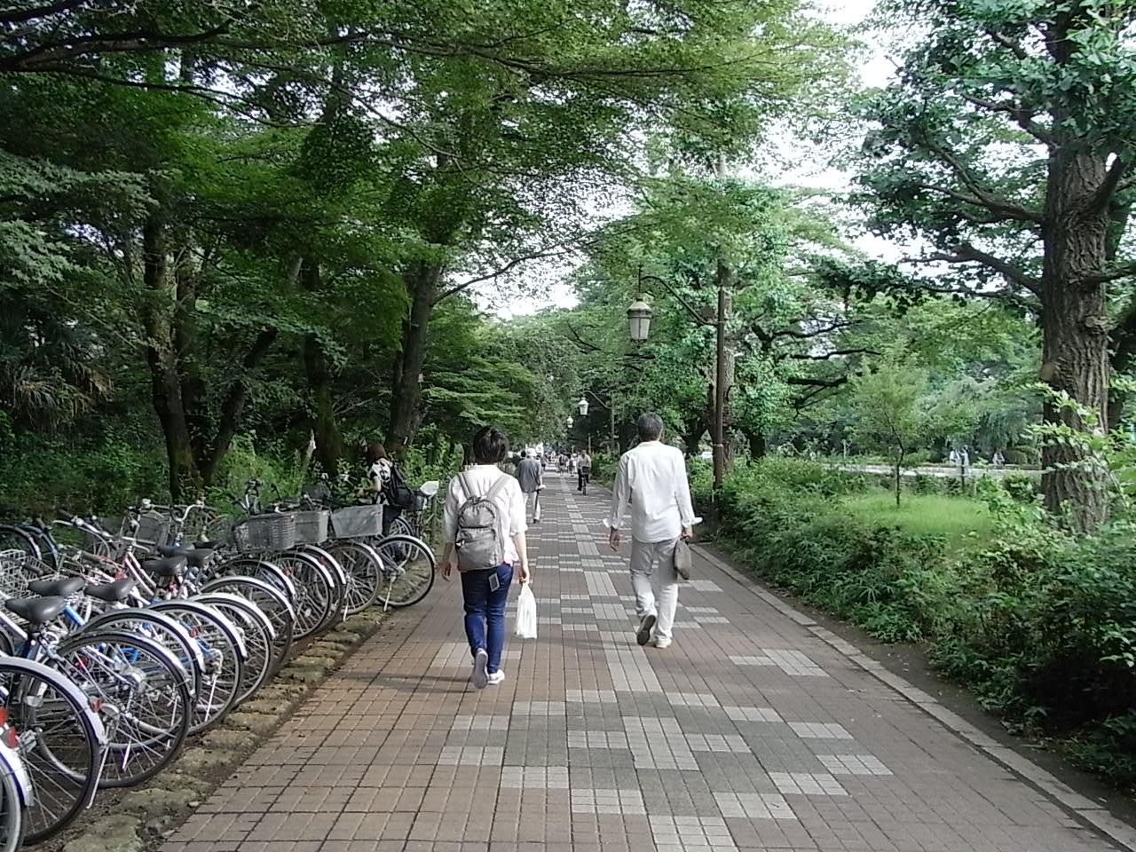 f0178153_2011331.jpg