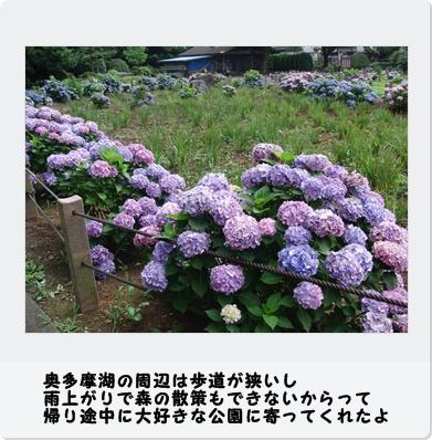 b0098660_220045.jpg