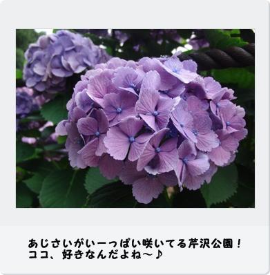 b0098660_220877.jpg