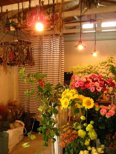 【cafe couwa】 菖蒲町で過ごした土曜日_c0199166_1045262.jpg