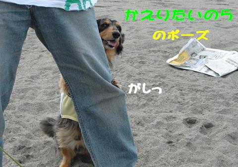 f0195891_212644.jpg