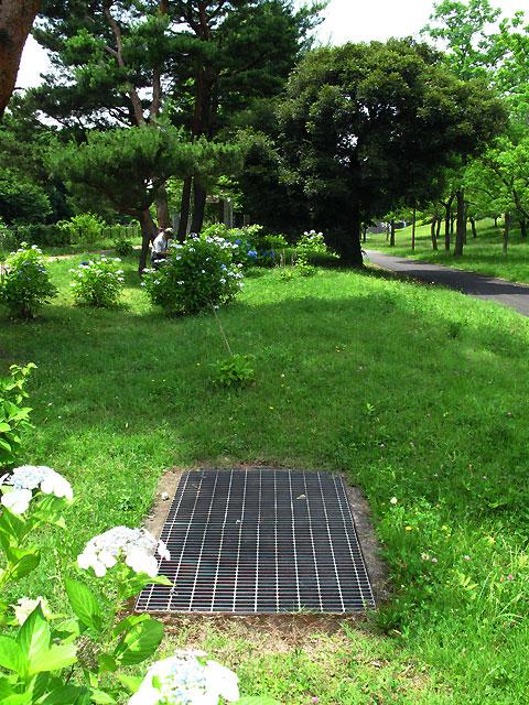 柴崎分水(立川分水)(2)昭和記念公園〜奥多摩街道まで_c0163001_025657.jpg