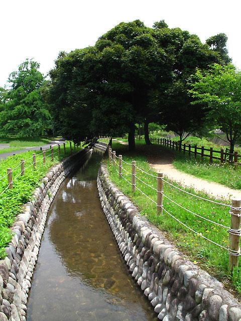柴崎分水(立川分水)(2)昭和記念公園〜奥多摩街道まで_c0163001_031413.jpg