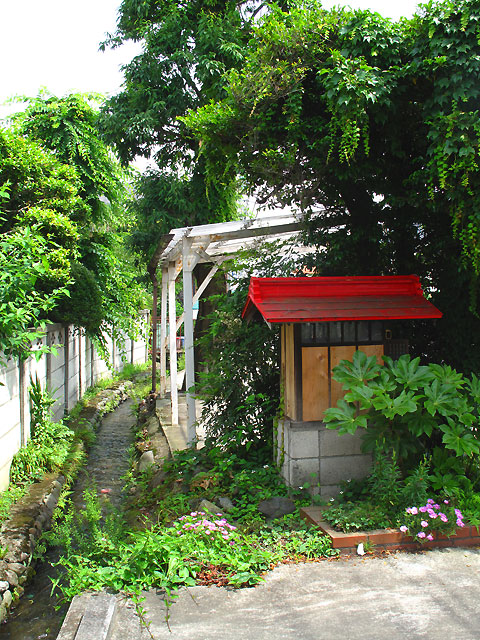 柴崎分水(立川分水)(2)昭和記念公園〜奥多摩街道まで_c0163001_054865.jpg