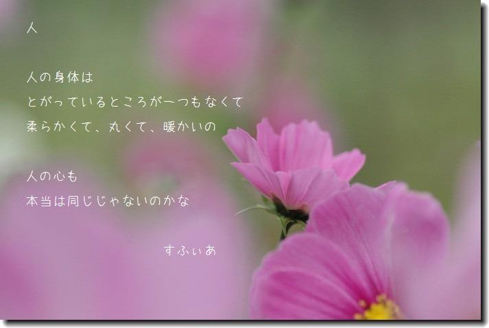 b0152416_1642911.jpg