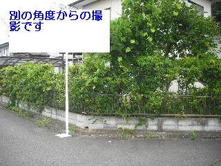 f0031037_20535826.jpg