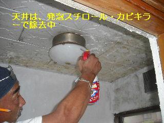 f0031037_2114077.jpg