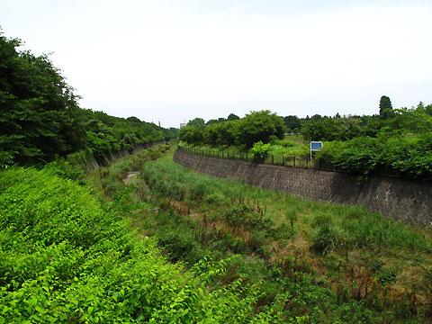 柴崎分水(立川分水)(2)昭和記念公園〜奥多摩街道まで_c0163001_011832.jpg