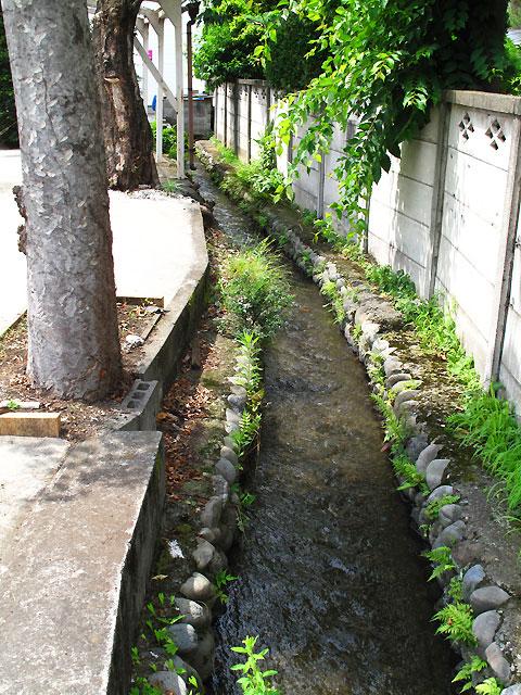 柴崎分水(立川分水)(2)昭和記念公園〜奥多摩街道まで_c0163001_073999.jpg