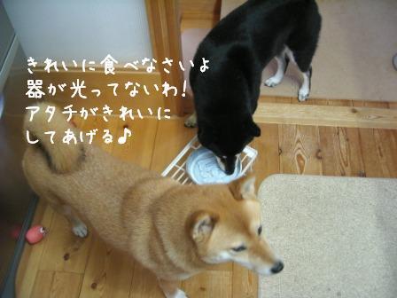 f0068501_20245097.jpg