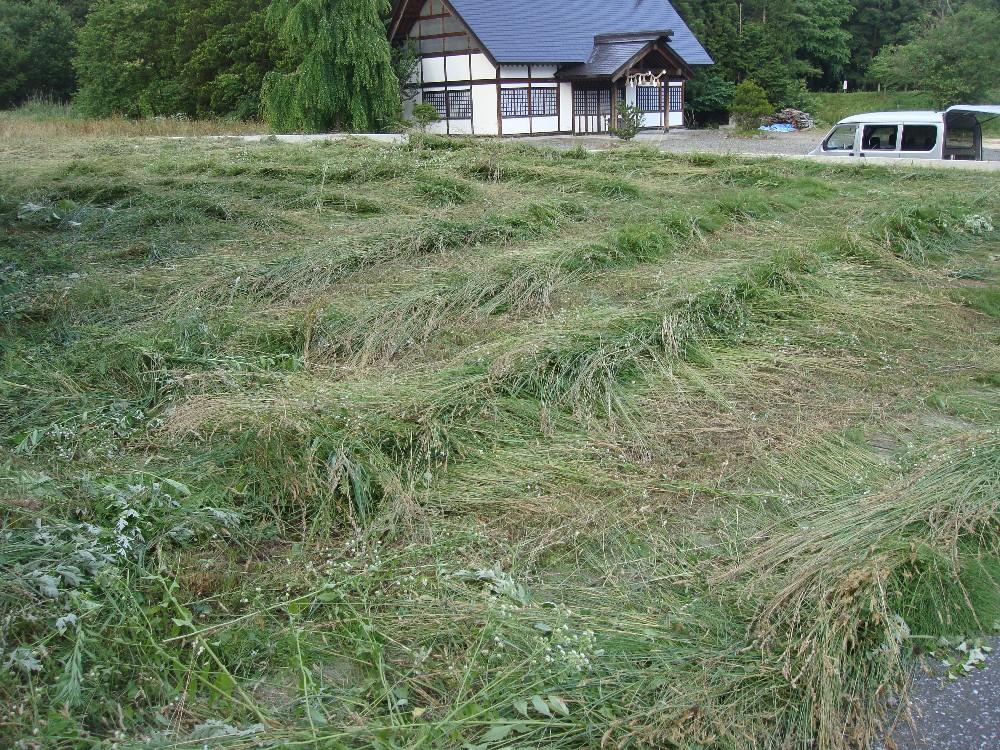 草刈り_c0111229_18584125.jpg