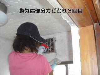 f0031037_22201297.jpg