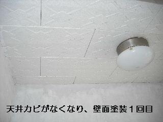 f0031037_22203231.jpg