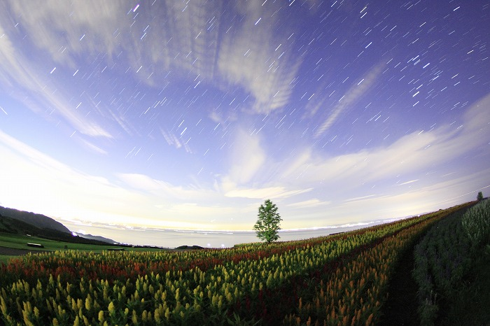 a starry night during the rainy season_a0122544_19184681.jpg